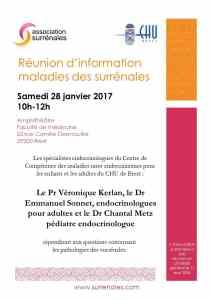 Réunion Brest le 28 janvier 2017
