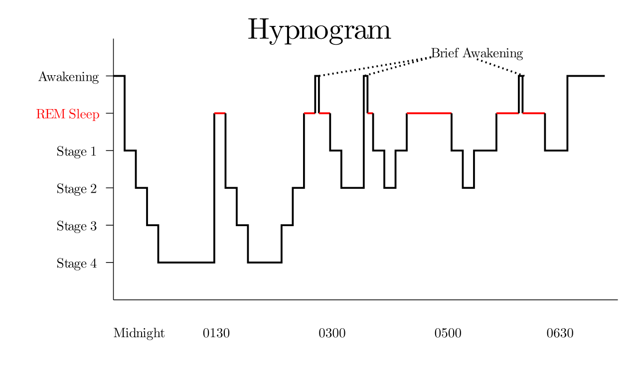 The interactive trigonometry of sleep cycles | Surrounded by