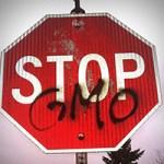 stop gmo