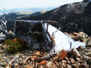 Silver Cloud Survival Shelter