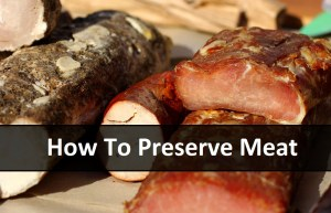 How To Preserve Meat | episode 150