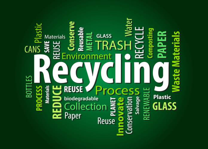 Why Is Recycling Important for You and Your Business?