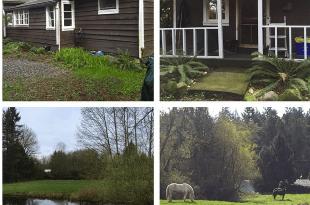 once upon a farm blog