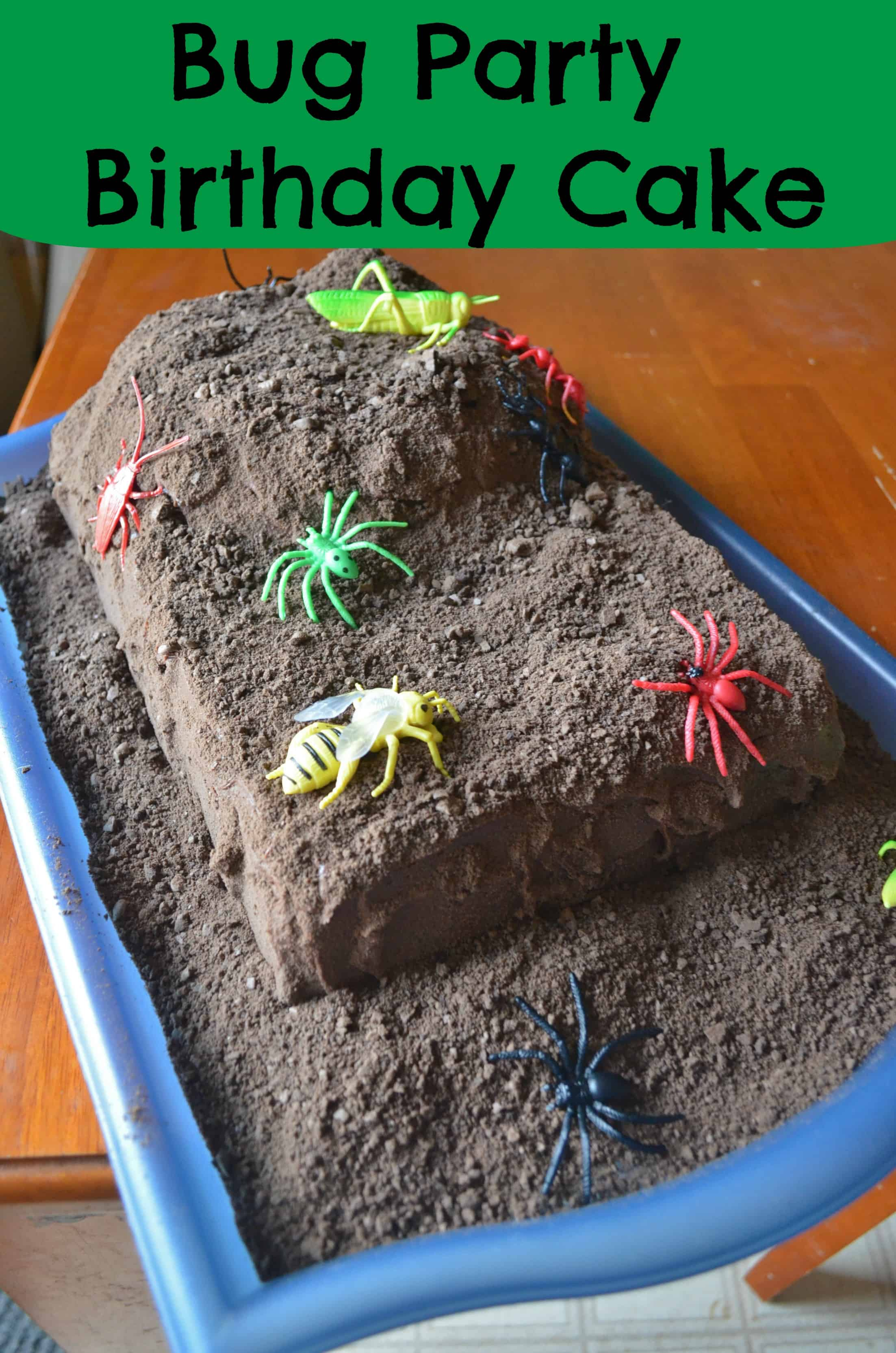 fun bug birthday party ideas for kids