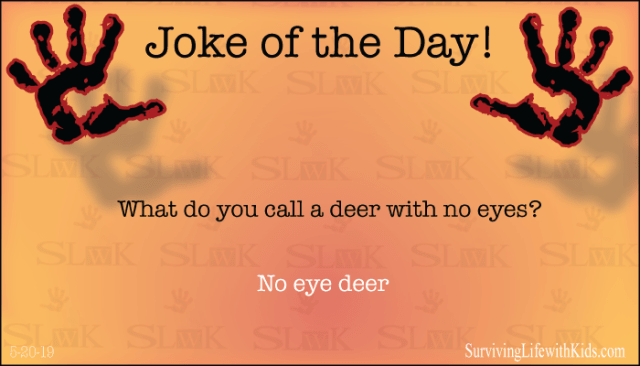 Joke: What do you call a deer with no eyes?