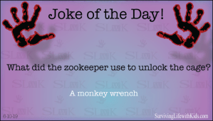 What Did The Zookeeper Use to Unlock The Cage?