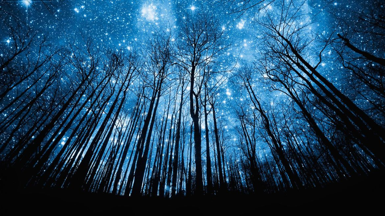 mind wandering at night