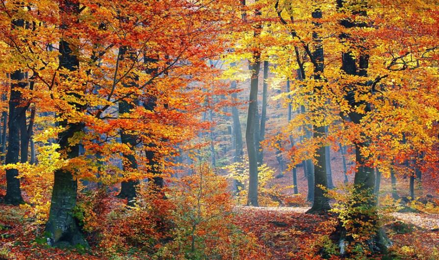 life-is-a-season-of-change