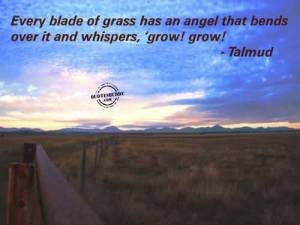 best-ever-angel-quote-every-blade-of-grass-has-an-angel-that-bends-over-it-and-whispers-growgrow-talmud-300x225 Hearing the Grass Grow