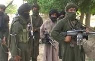 अफगानिस्तानमा आतंककारी आक्रमणमा परी ६० भन्दा बढी तालिवान मारिए