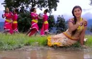 गायीका पन्तको 'दशैँ तिहार गाउँमै रमाइलो' भिडियो
