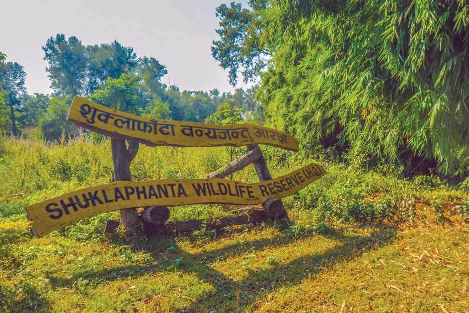 Tourist arrivals at Shuklaphanta national park not encouraging