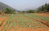 उच्च मूल्य कृषि विकास वस्तु आयोजना सम्पन्न