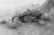 चितुवाको आक्रमणबाट २३ को मृत्यु