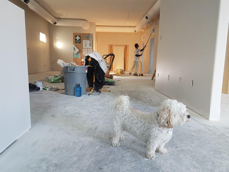 Nettoyage aprés location ou travaux de rénovation