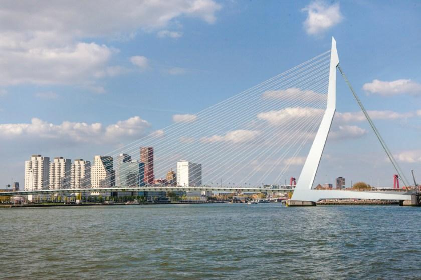 Fotograf holland Rotterdam Erasmusbruecke Schwan 6
