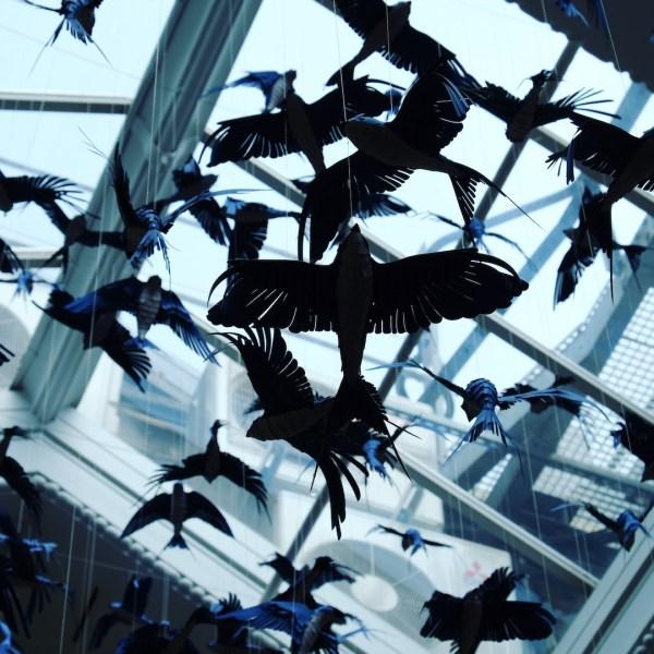 """""""Birds"""" von Mathilde Nivet"""