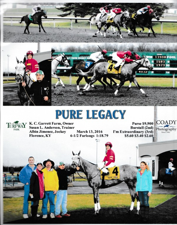 Pure Legacy 3 13 16