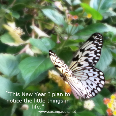 little things in life butterfly by Susan Gaddis
