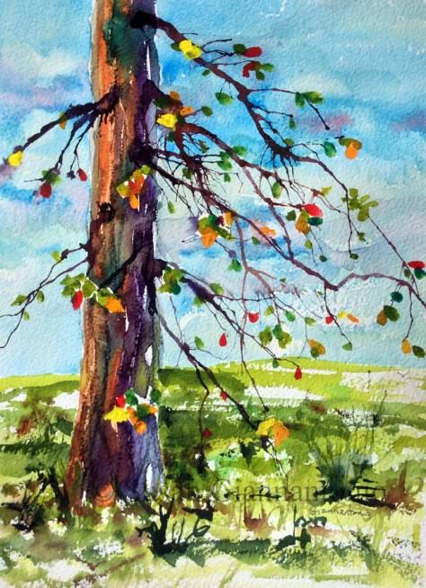 Tree Fantasy 5