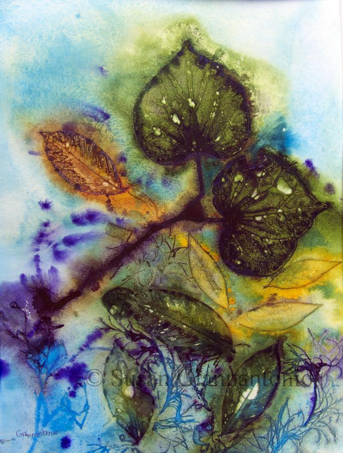 "Debbie's Garden 3, 11 x 15"" transparent watercolor on paper"