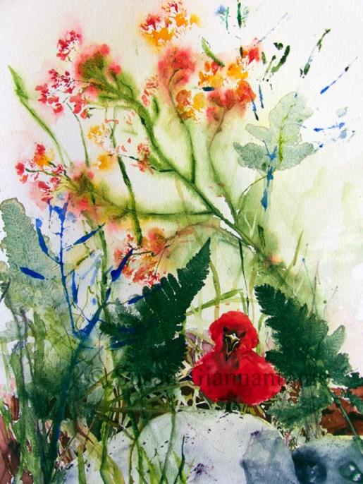 "Bossy, 16 x 12"" transparent watercoor on watercolor board"