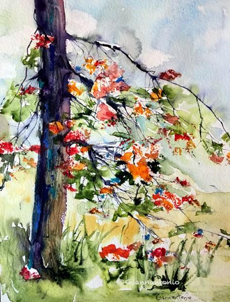 "Tree Sensation, 20 x 16"" transparent watercolor"