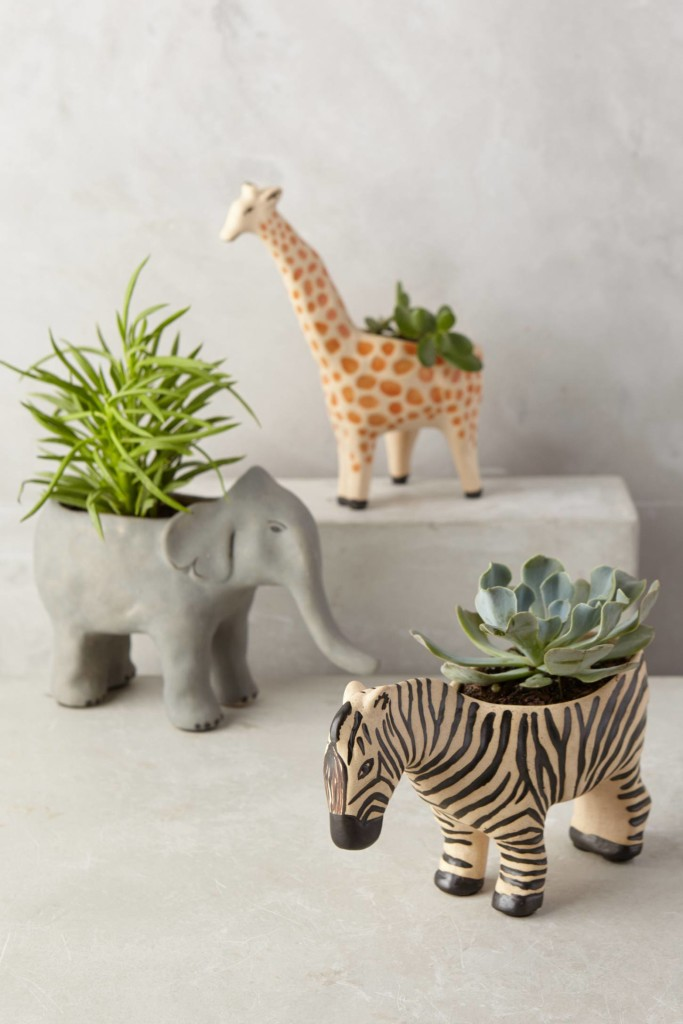 Wild Wanderer Planter- Anthropologie