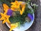 zucchini flowers etc.