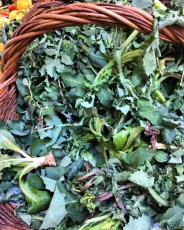 Preboggion, the wild herb mixture used in Liguria to stuff ravioli and vegetable tarts.