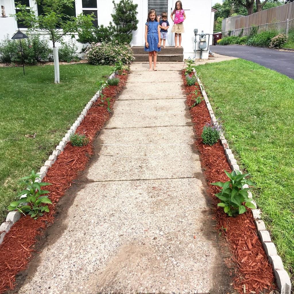 This Summer's Garden