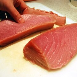 Preparing tuna for sushi