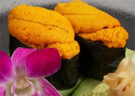 Sushi Items Uni Sea Urchin
