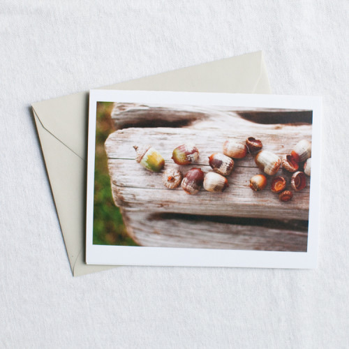 little acorns note card from tiny tree studio