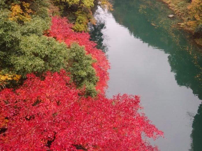 奥多摩紅葉,奥多摩カヌー,東京奥多摩