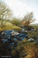A painting entitled Dartmoor Stream by Glen Smith