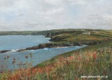 A painting of the Cornish coastline near Port Isaac