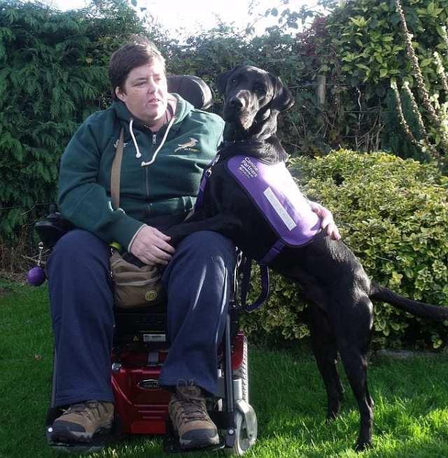 Canine Partners