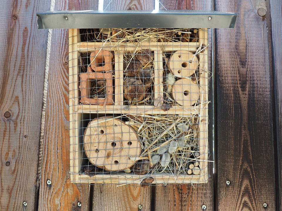 insect-hotel-1469301_960_720
