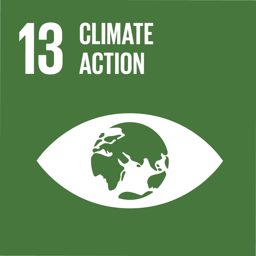 United Nations Sustainable Development Goal 13