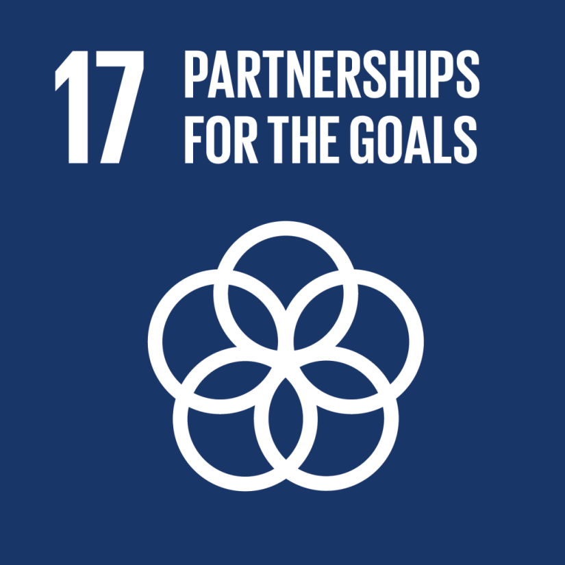 United Nations Sustainable Development Goal 17
