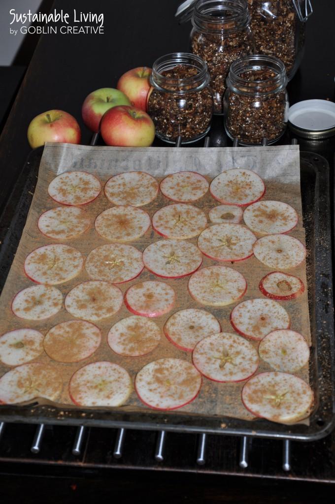 Granola med äppelchips