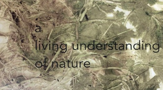 News: A living understanding of nature