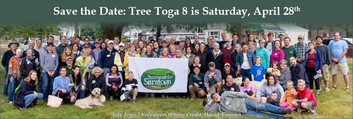 Tree Toga 7 Volunteers