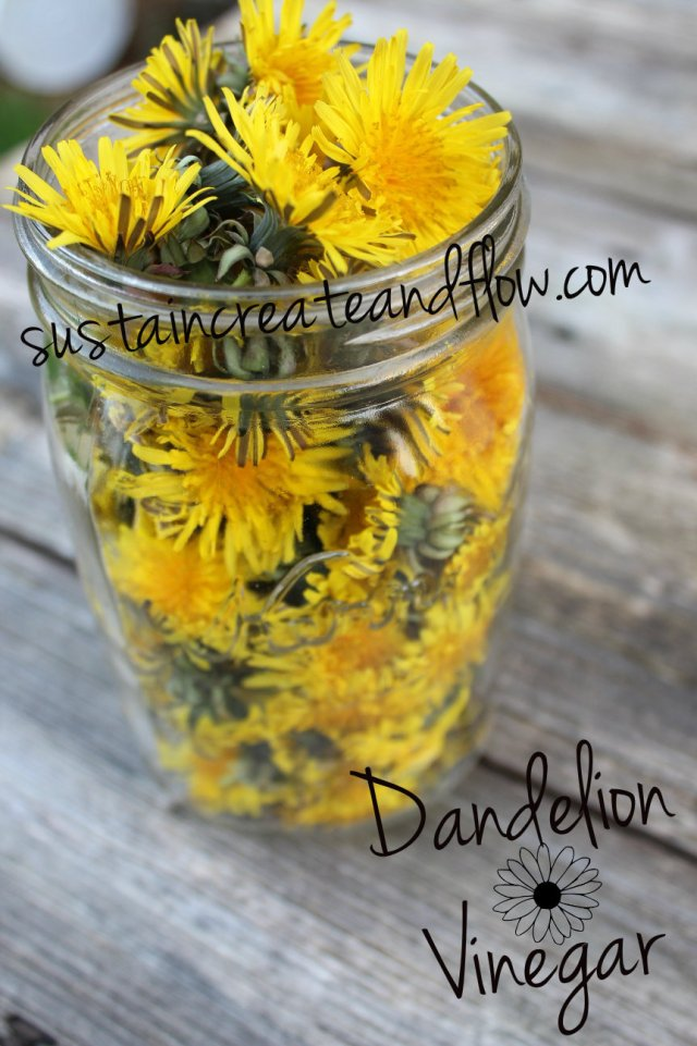 dandelions-bursting-from-mason-jar