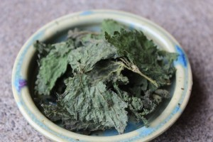 Herbal infusion-Nettle