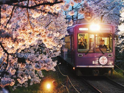 078 - Randen Sakura