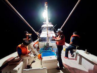 065 - Bateau de pêche