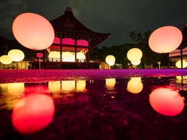 057 - Kamigamo Jinja Light-up