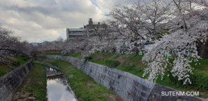 Yamazaki River